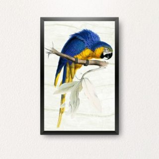 Posters by MyPrintingDeals.com